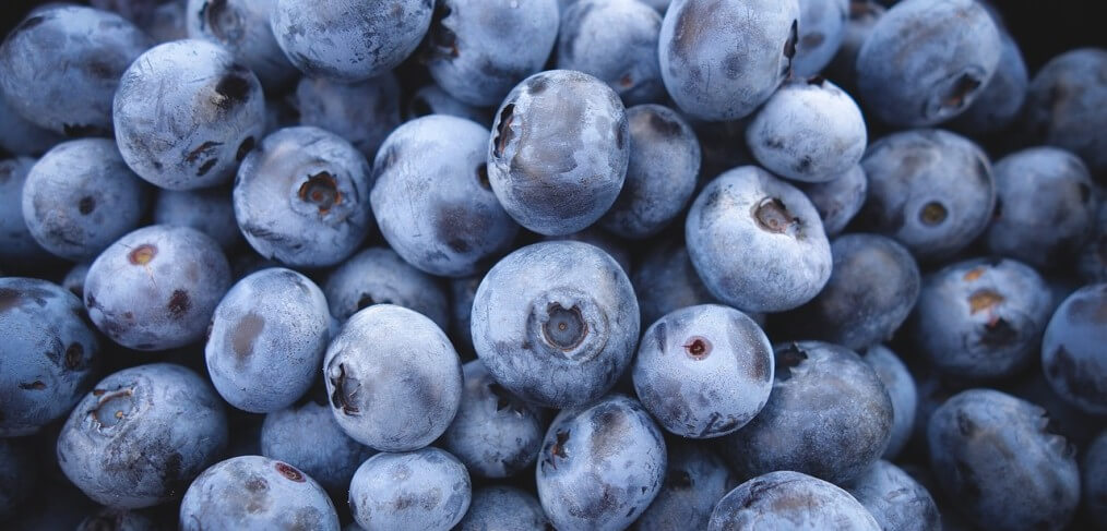 Why Blueberries Deserve a Place on Your Plate