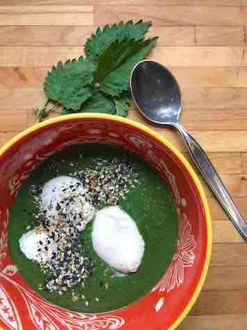 Healthy nettle soup